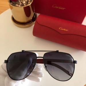 Cartier Men's Sunglasses ASS650020