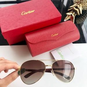 Cartier Men's Sunglasses ASS650021