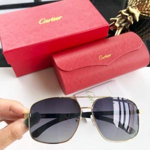 Cartier Men's Sunglasses ASS650022
