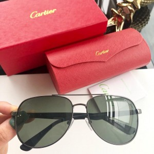 Cartier Men's Sunglasses ASS650024