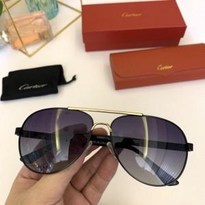 Cartier Men's Sunglasses ASS650025