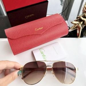Cartier Men's Sunglasses ASS650029