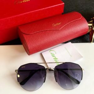 Cartier Men's Sunglasses ASS650030