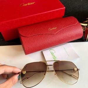 Cartier Men's Sunglasses ASS650031