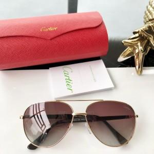 Cartier Men's Sunglasses ASS650034