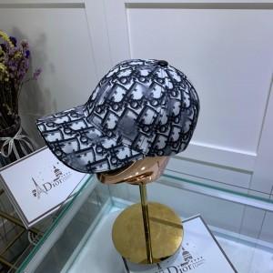Dior Men's hat ASS650439
